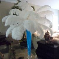 Yeni Devekuşu Tüyler Plume Centerpiece Düğün Parti Masa Dekorasyon için doğal beyaz Devekuşu Tüyler (Seçmek için Birçok Boyutları)