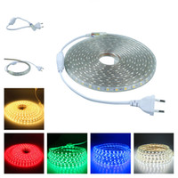 AC220V AC110V LED Flexible Strip Light With Power Plug Water...