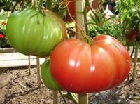 Rare graines de tomates rouges de graines de légumes biologiques Plante de décoration de jardin 30pcs B06