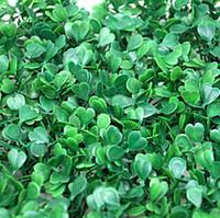 50 قطع محاكاة العشب الاصطناعي العشب العشب الاصطناعي البلاستيك العشب العشب العشب الرماية propsdecorations إمدادات 60 سنتيمتر * 40 سنتيمتر