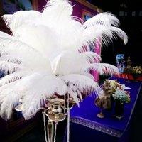 Commercio all'ingrosso 100 pz bianco piume di struzzo plumes per centrotavola matrimonio decoraction costume arredamento fornitura piuma decor