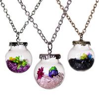 Original Driften Flasche Lively Pendent Runde Glas Halskette Kreative Natur Drift Sand Frauen Trockene Blumen-Halskette Mädchen Weihnachtsgeschenk