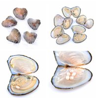 Shell Wish Pearl Oyster Vacuum- packed 6- 7mm  7- 8mm Randomly ...