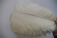 wholesale 100pcs ivory Ostrich Feather Plume for Wedding cen...