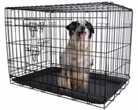 36 '' 2 Portas fio Folding Pet Crate Dog Cat gaiola Suitcase Kennel Playpen w / Tray