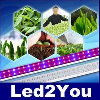 Горячие продажи 2ft 3ft 4ft 5ff T8 пробирки светодиодные светодиодные светодиодные цветок Выращите свет для растений в парнике красный / синий AC 110-240V