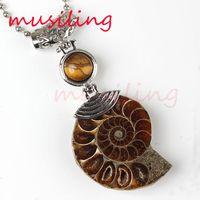 Demi Ammonite Conque Fossiles Pendentifs Collier Gem Pierre Perle Pendentif Pendule Bijoux Charmes Reiki Guérison Amulette Mode Hommes Bijoux