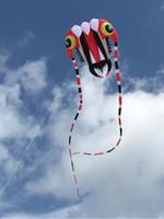 Énorme 3D 7 carrés 1 ligne Stunt Parafoil Trilobites POWER Sport cerf-volant jouets de plein air