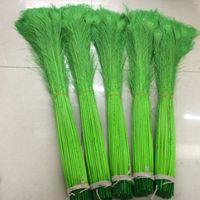Envío gratis 400 unids / lote 30-35 pulgadas verde lima pluma de pavo real para bodas artesanía fiesta evento festivo halloween suministro de aduanas