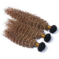 Vente chaude Honey Blonde # 1B 27 Bundles de cheveux humains Malaysian Ombre Couleur Deep Wave Ondulés Cheveux Weaves Trame Profondes Cheveux Bouclés Extensions