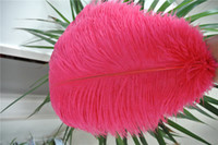 100pcs 18- 20inch Watermelon pink Ostrich Feather Plume for W...