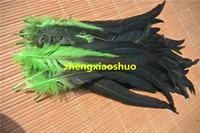 Il trasporto libero 200 pz / lotto 12-14 pollice lime verde coda di gallo coda di gallo piuma coque piuma allentata per costumi festa evento halloween fornitura