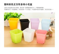 Free shipping Small square POTS multicolor flower pot more t...