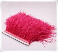 Оптовая 10 ярдов / лот Арбуз розовый 5-6 дюймов в ширину страуса перо обрезки бахрома для свадебных ремесел скрит поставка