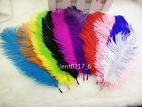 Wholesale high quality natural ostrich feathers 6- 8 inch 15-...
