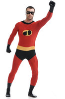 Incredibles Costume Lycra Spandex Back Zipper Full Body Zent...