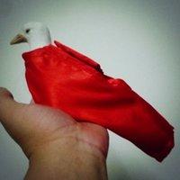 Profesyonel Dove Bag ve Dove Bag Tutucu Takımı - Stage Magic