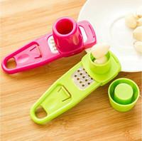 Multi Functional Ginger Aglio Grinder Grattugia Pialla Mini Cutter Utensile da cucina Utensili da cucina Accessori da cucina