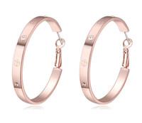 Ohrringe Schmuck Mode Frauen Hohe Qualität Österreichischen Kristall 18 Karat Gold Überzogene Creolen Großhandel Drop Shipping TER092