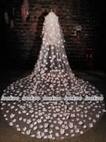 Beautiful 3 Meters Two Layers Cathedral Tulle Bridal Veils w...