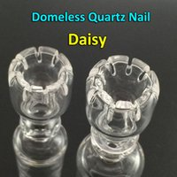Free DHL Shipping!!! Daisy Domeless Quartz Nail With Female ...