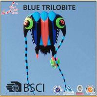 3D 7sqm طائرة ورقية لينة 3D ضخمة لينة عملاقة ثلاثية Trilobites طائرة ورقية الرياضة في الهواء الطلق سهلة للطيران