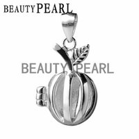 5 Pieces Lovely Apple Small Lockets Gift 925 Sterling Silver...