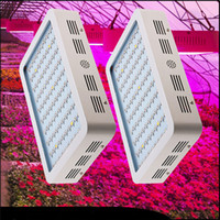1000w led grow light Recommeded High Cost- effective Double C...