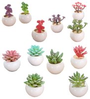 Multi Color Artificial Ceramic Creative Succulents Potted Wi...