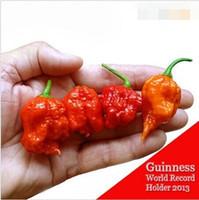 """100 GRAINES - 100% de graines de poivron rouge """"Carolina Reaper"""" fraîches et authentiques (piment fort) Graines de légumes biologiques * Livraison gratuite"""