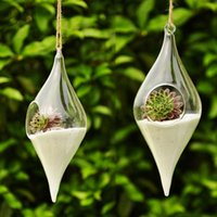 Hanging Glass Vase Hanging Terrarium Hydroponic Plant Flower...