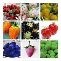 Delicious Multi-color Erdbeere samen 400 STÜCKE Schwarz Blau Weiß Erdbeere Obst Samen Topfpflanzen Hausgarten Wahre Vielfalt