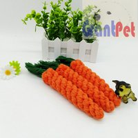 carrotPet Puppy Cotty chew Favourite Product top sales Grant...