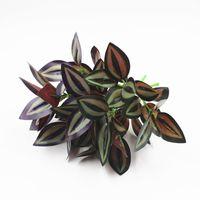 Décoration de mur de simulation de plante de jardin avec des plantes à fleurs en bois laisse 5 feuilles de prunier Diaozhu.