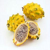 100 PZ Rare Giallo Pitaya Alberi Da Frutto Semi Perenni Piante Non-ogm Hylocereus Drago Semi di Frutta Giardino Domestico