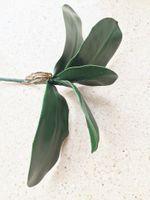 Feuille d'orchidée bouquet feuille de Phalaenopsis 28 cm longueur papillon artificiel orchidée feuilles plante verte de mariage décoration de noël