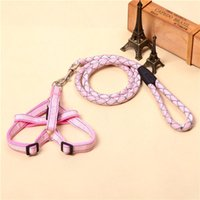 Pet Cat Puppy Dogs Leashes and harness Long Smooth Dacron Br...