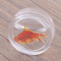 Gyllene fiskar rensa vatten flytande öronproppar och tunnlar piercing öronmätare öron expander örhängen kropp smycken kött tunnel