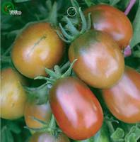 Graines De Tomate Nouvelle Arrivée Bonsaï Graines De Légumes Biologiques Pour La Maison Jardin 20 particules / sac r016