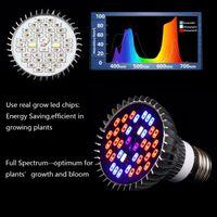 220V / 110V 28W 30W 50W 80W E27 LED GROW LIGHT LAMP FÖR Växter Grönsaker Full Spectrum Plant Light Hydroponic System Bloom