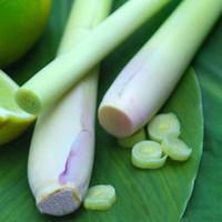 400 graines de citronnelle Herb Edible Lemongrass Kitchen Graines de légumes Usage médicinal