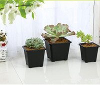 Wholesale Black Square Nursery Garden Succulent pots for Ind...