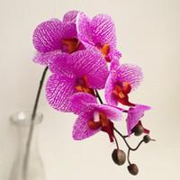 Toucher Réel Orchidée 7 Têtes Latex Orchidées Faux Phalaenopsis Briquet Violet Pour Le Mariage Pièces maîtresses Home Party Fleurs Décoratives