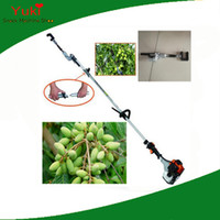 Type de l'essence Olive shaker 2.5HP Olive Tree machine Shaker Récolte des olives machine petits fruits Picking machine
