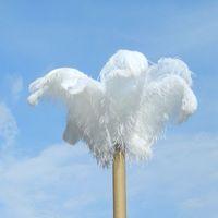 Длинное белое перо страуса много размер наградное качество покрасило цвет смешивания перья страуса для украшения Centerpieces таблицы свадебного банкета сбывания