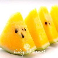 10 Pcs Green Skin Yellow Watermelon Seeds Easy to Grow DIY H...