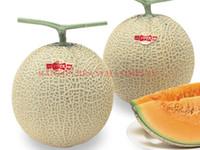 1 Originalpackung 100 stücke Japanischen YAE TASMAN Melone Samen orange fleisch süße melone Samen Ausgezeichnete Palisi obst samen zum pflanzen