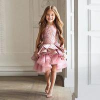Muhteşem Vestidos de Primera Kız Dres Comunion Fermuar Dökümlü A-line Pageant Noel Pembe Tül Rustik Çiçek Kız Elbise Katmanlı Tül Etek