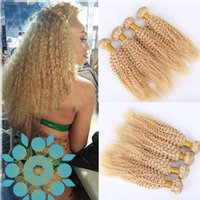 Pure color Brazilian Kinky Curly Human Hair Bundles Pure Col...