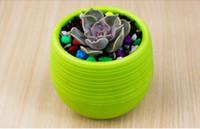 2017 جديد الأواني الغراس الأواني البلاستيكية المعاد تدويرها مثالية لل عصارة قوية ، قابلة لإعادة الاستخدام نبات زهرة عشب السرير وعاء